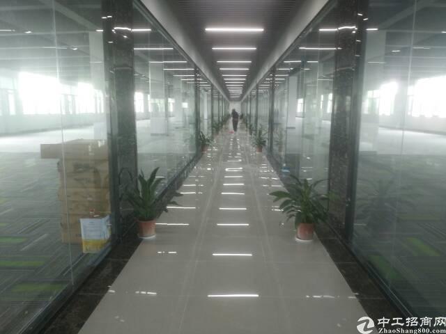 油松天汇大厦旁新出豪华装修办公室整层2800平方招租