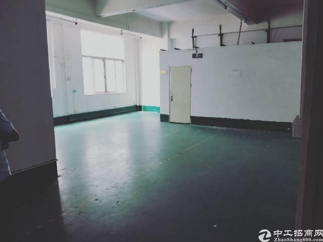 龙华油松独门独院,豪华装修208平厂房招租