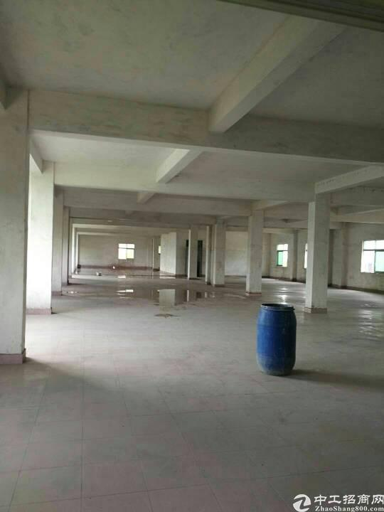 东莞市茶山镇新岀标准厂房三层2500平方火爆