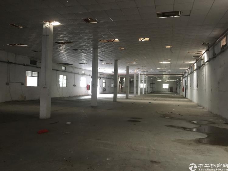 龙华独门独院,单一层钢构5000平