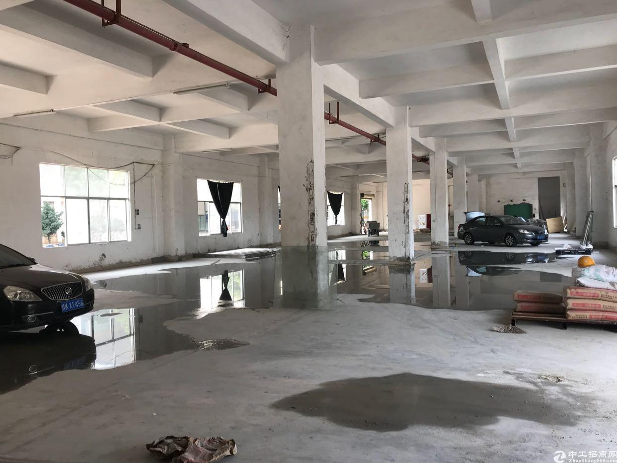 新塘荔新大道独院新装修6000平厂房出租