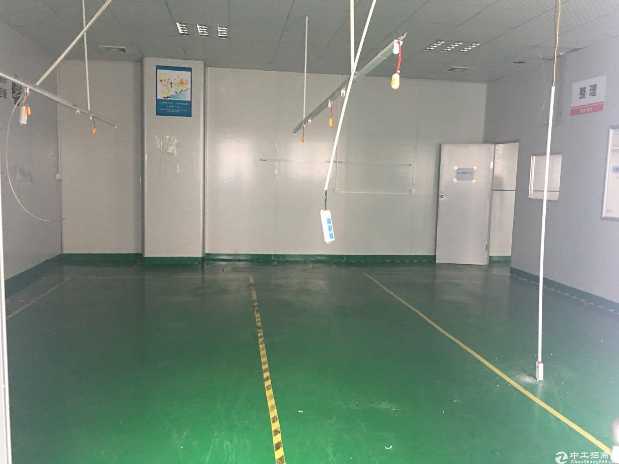 陈江镇刚出400平地坪漆装修好非常适合电子厂房出租