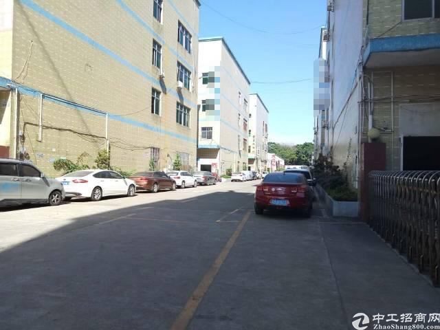 龙华汽车站后面新出原房东优质厂房3楼1600平-图3