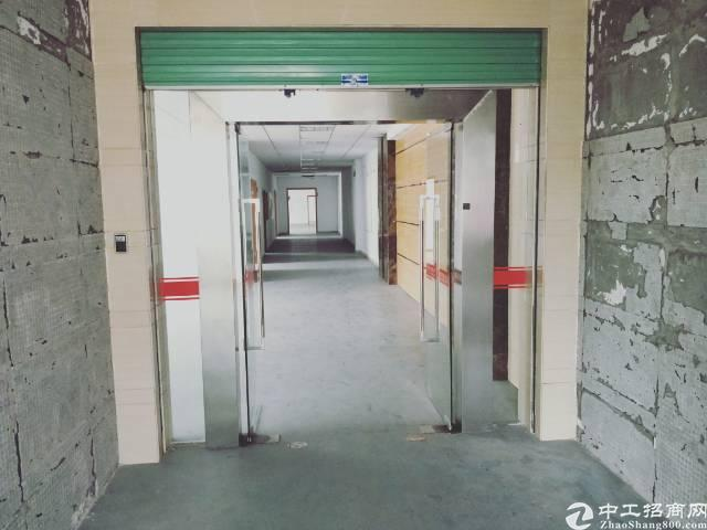 龙华汽车站旁,独门独院豪华装修850平厂房招租