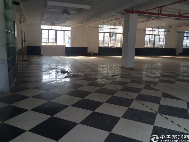 观澜最新独院厂房1-2层 清平高速出口
