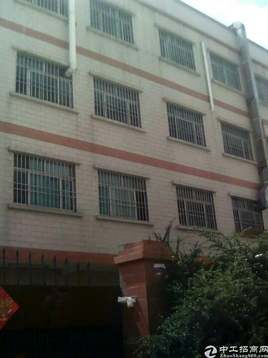 惠州沥林经典小独院厂房出租