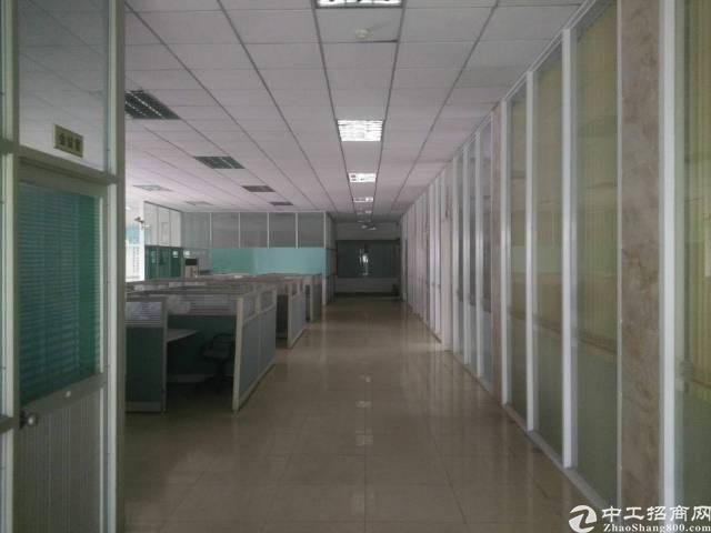 新塘民营工业区新出滴水10米单一层钢构独院厂房-图3