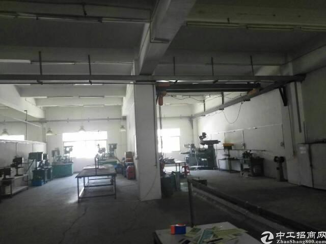 涌头独院厂房6600平米可分租