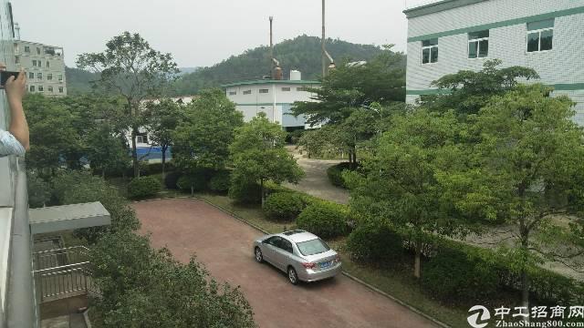 惠州国土证五万平米厂房出售
