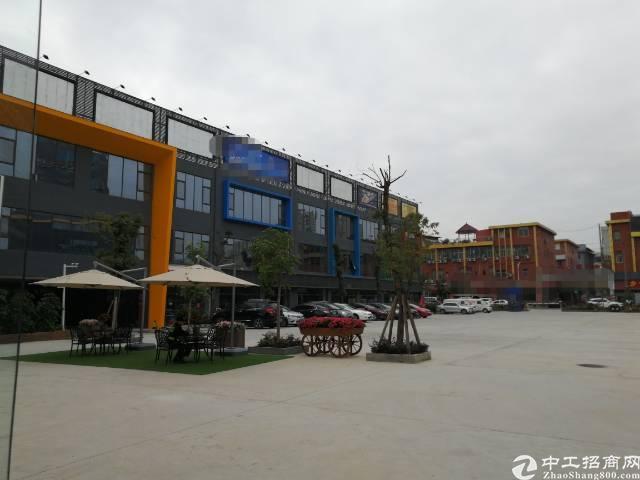 沙井107国道边高新孵化产业园500平米起租
