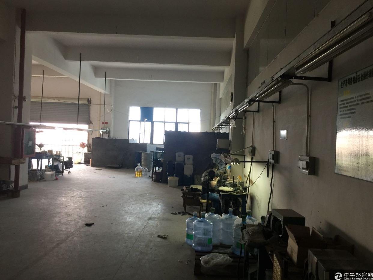 松岗新出厂房800平方豪华装修