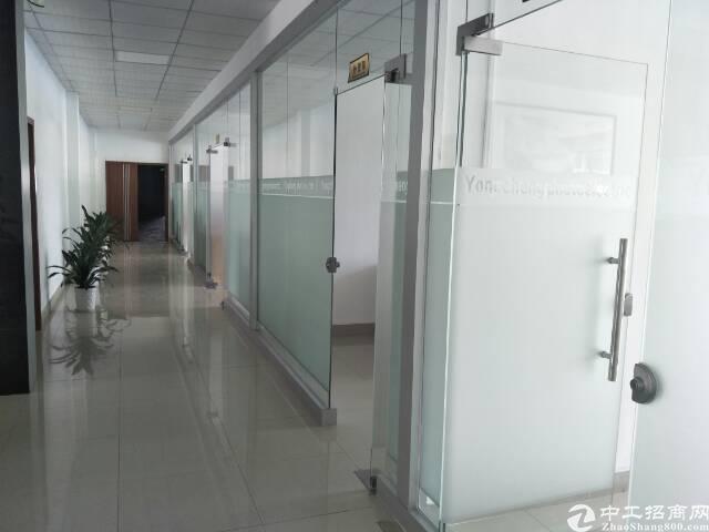 沙井国道边三楼1650平带装修出租-图4