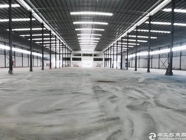 新塘新出独院单一层钢构厂房