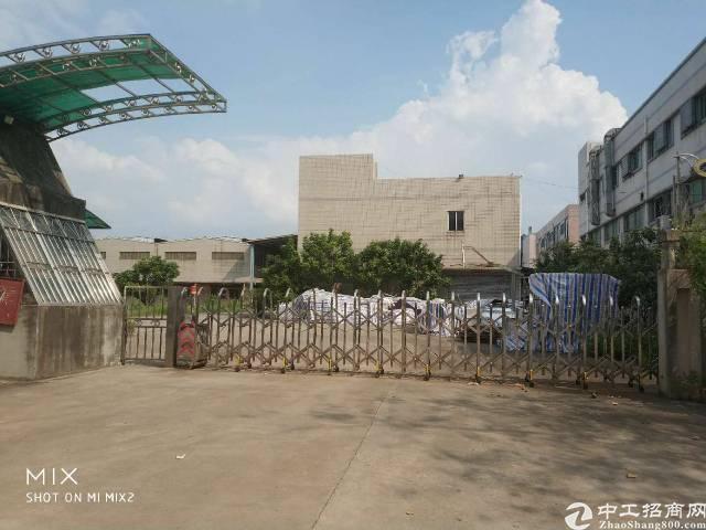 大朗花园式独院钢结构5000平方厂房出租