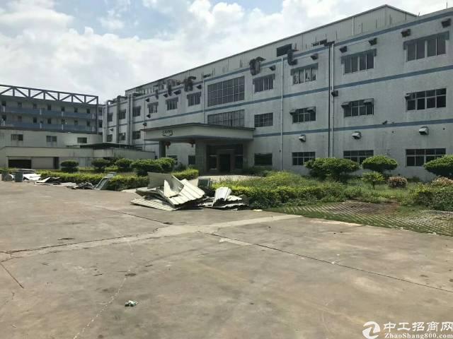 龙华区观澜原房东厂房1200平方带装修厂房出租