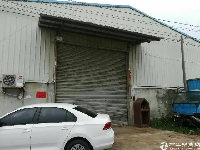 高埗镇独门独院原房东单一层钢构厂房出租