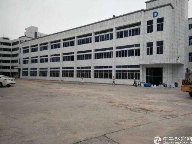 陈江镇标准独院厂房出租