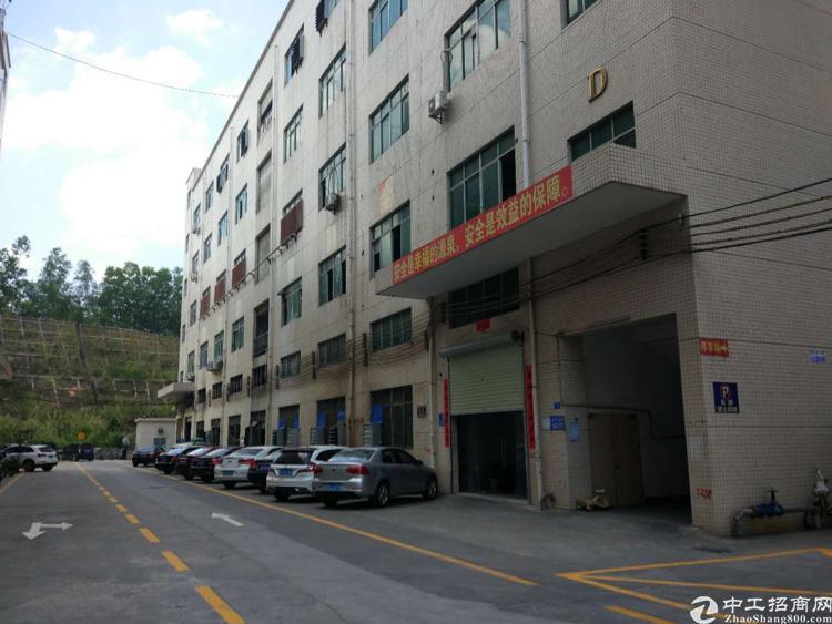 松岗107国道边楼上850平方豪华装修厂房