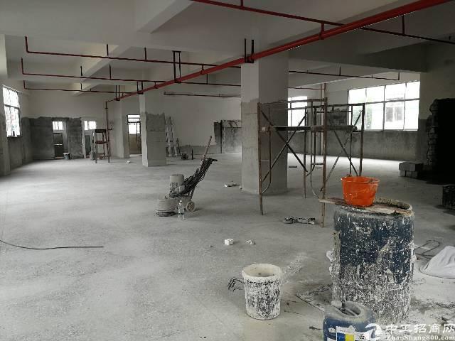 凤岗五联新出独门独栋标准厂房一层550平
