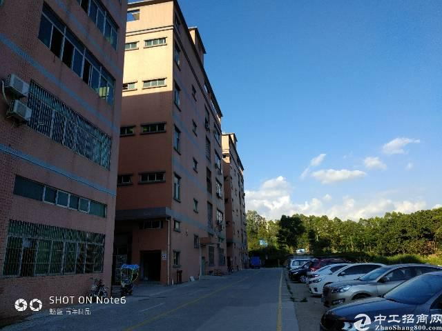 原房栋1-2楼共2300平带装修