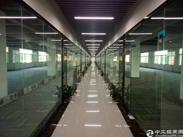 龙华龙胜地铁口研发基地大小可划分-图3