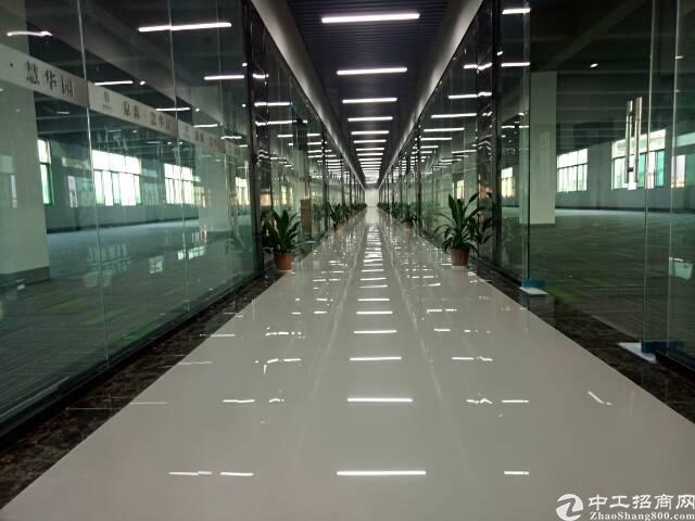 龙华龙胜地铁口研发基地大小可划分-图9