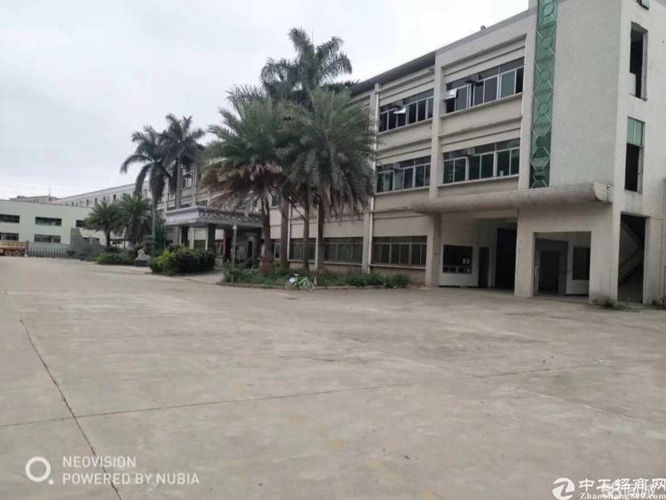沙井镇沙四工业区新出楼上600平米,带装修出租