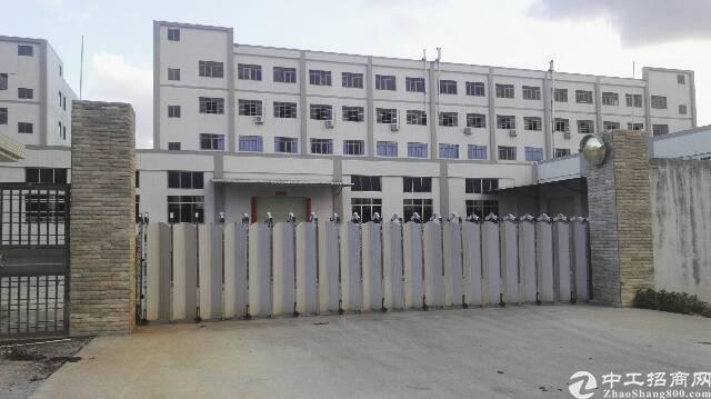 东莞石排独院厂房