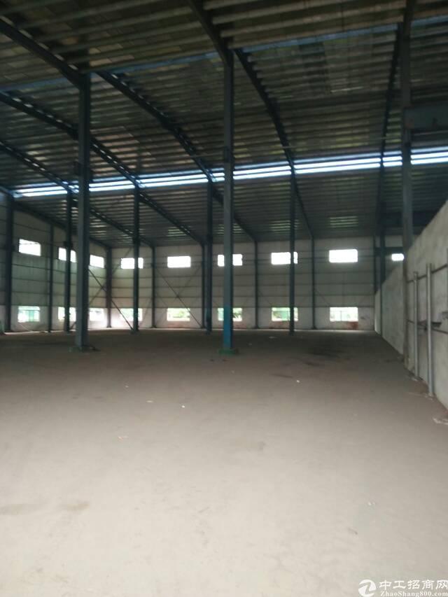 中堂新出全新单一层钢构厂房