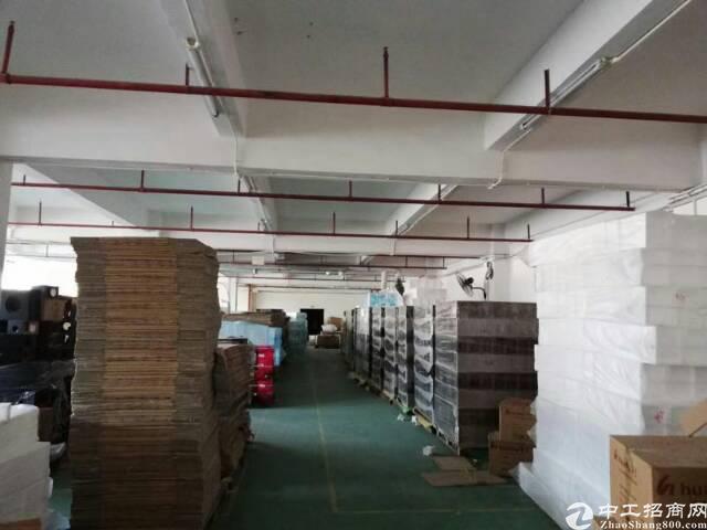 福永地铁口楼上2000平精装修厂房出租-图2