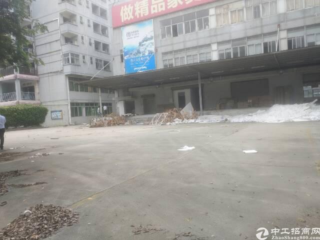 龙华独门独院总面积20000平方招租,可分租