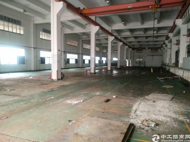 松岗107国道一楼8米高3000平米带航车厂房出租