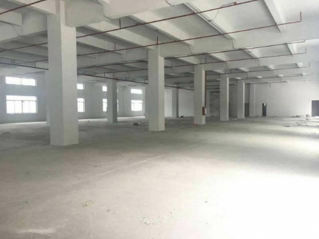 高埗镇工业区分租标准厂房1楼2500平带消防喷淋-图2