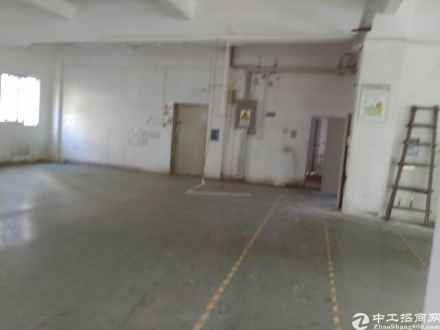 龙华大浪商业中心附近新出楼上标准厂房500