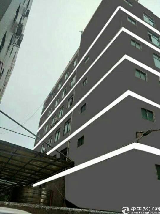 南山西丽一楼2120平方出租 可以分租