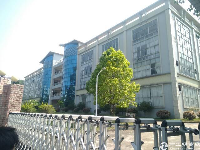 虎门镇沿江高速出口旁楼上800苹果精装修厂房出租