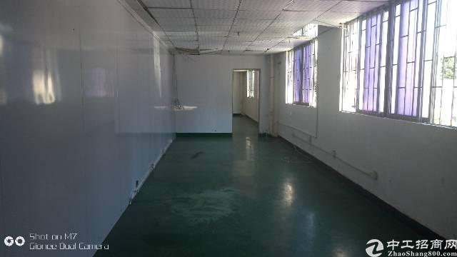 大岭山一楼带装修厂房招租,面积350平,隔好办公室,高5米