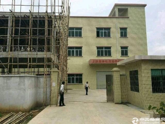 横沥镇 原房东1800独院标准厂房 一楼7米高