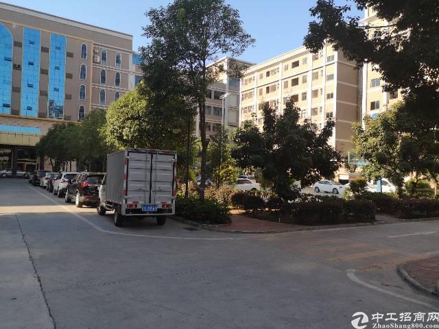 塘厦镇沙湖花园式工业园4楼标准厂房1980平方招租-图4
