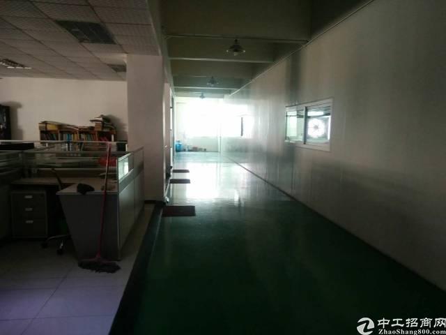 松岗新出楼上整层2980平方米带精装修办公室