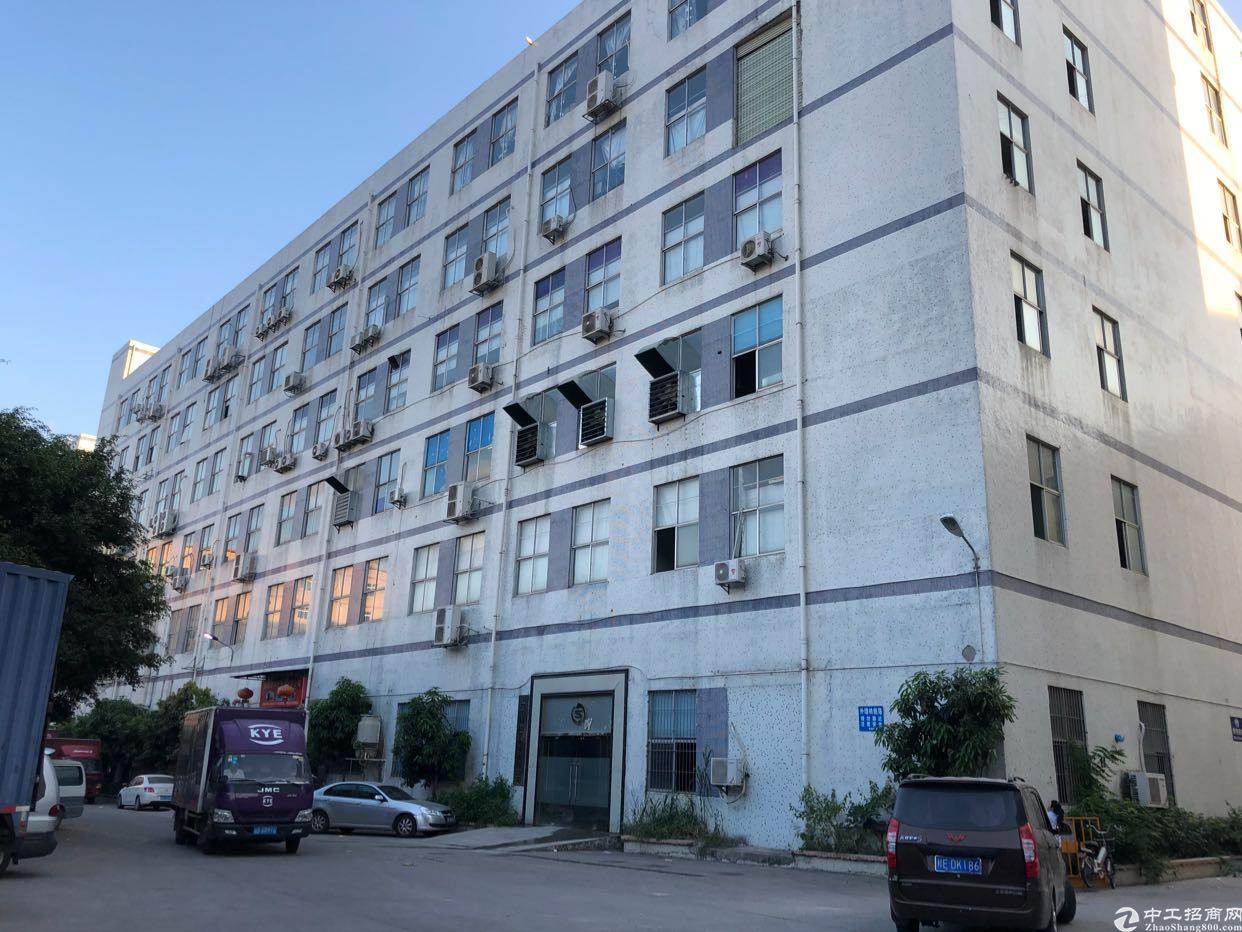 西丽阳光工业区1400平厂房招租