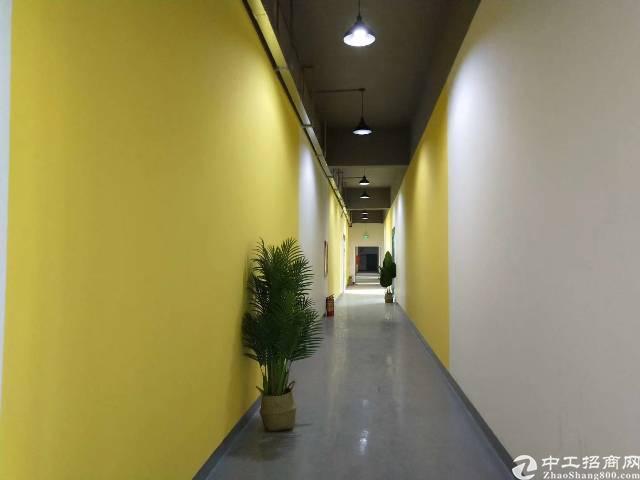 深圳市龙华新区厂房