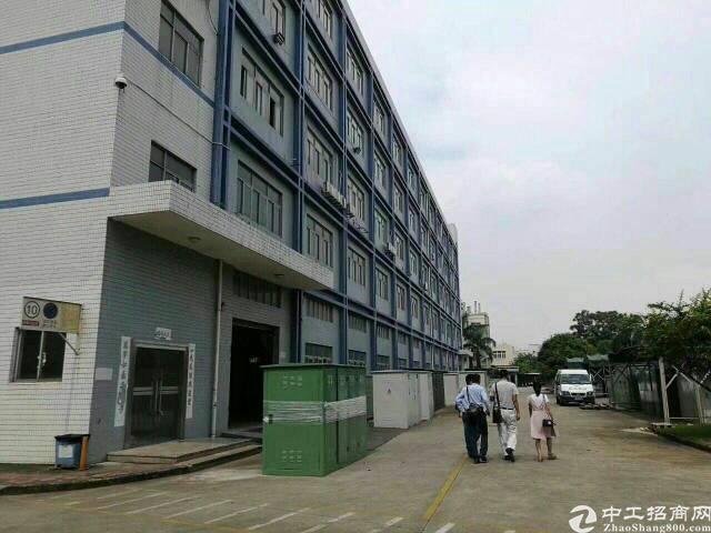 福永楼上一整层2360平方带装修厂房出租。