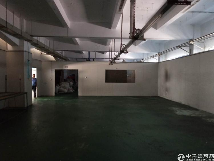 长安广深路口新出楼上一整层1450平带装修厂房出租