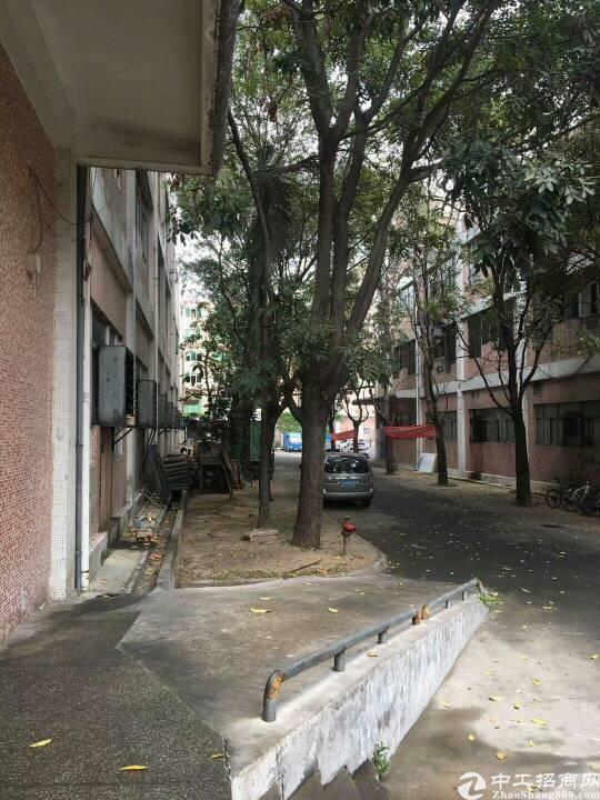龙华布龙路边独院招租1-3层9000平方可分租