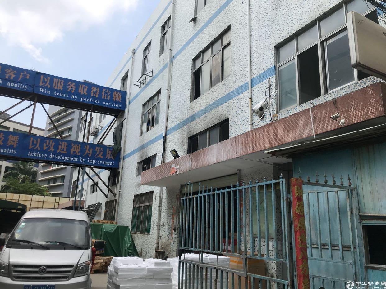 龙华龙济医院旁一楼1600平3楼1600平招租,独栋厂房