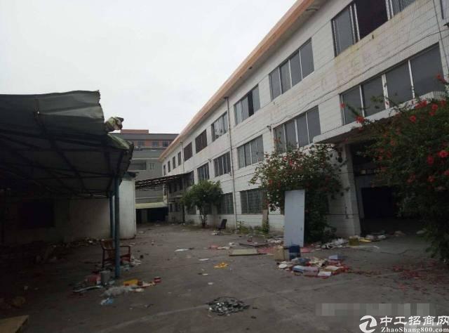 横沥镇原房东1300独院标准厂房一楼6.5米