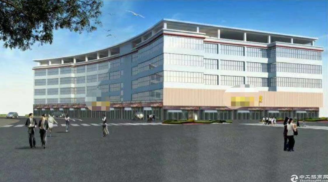 龙华商业酒店客户首选红本项目整栋17000平方