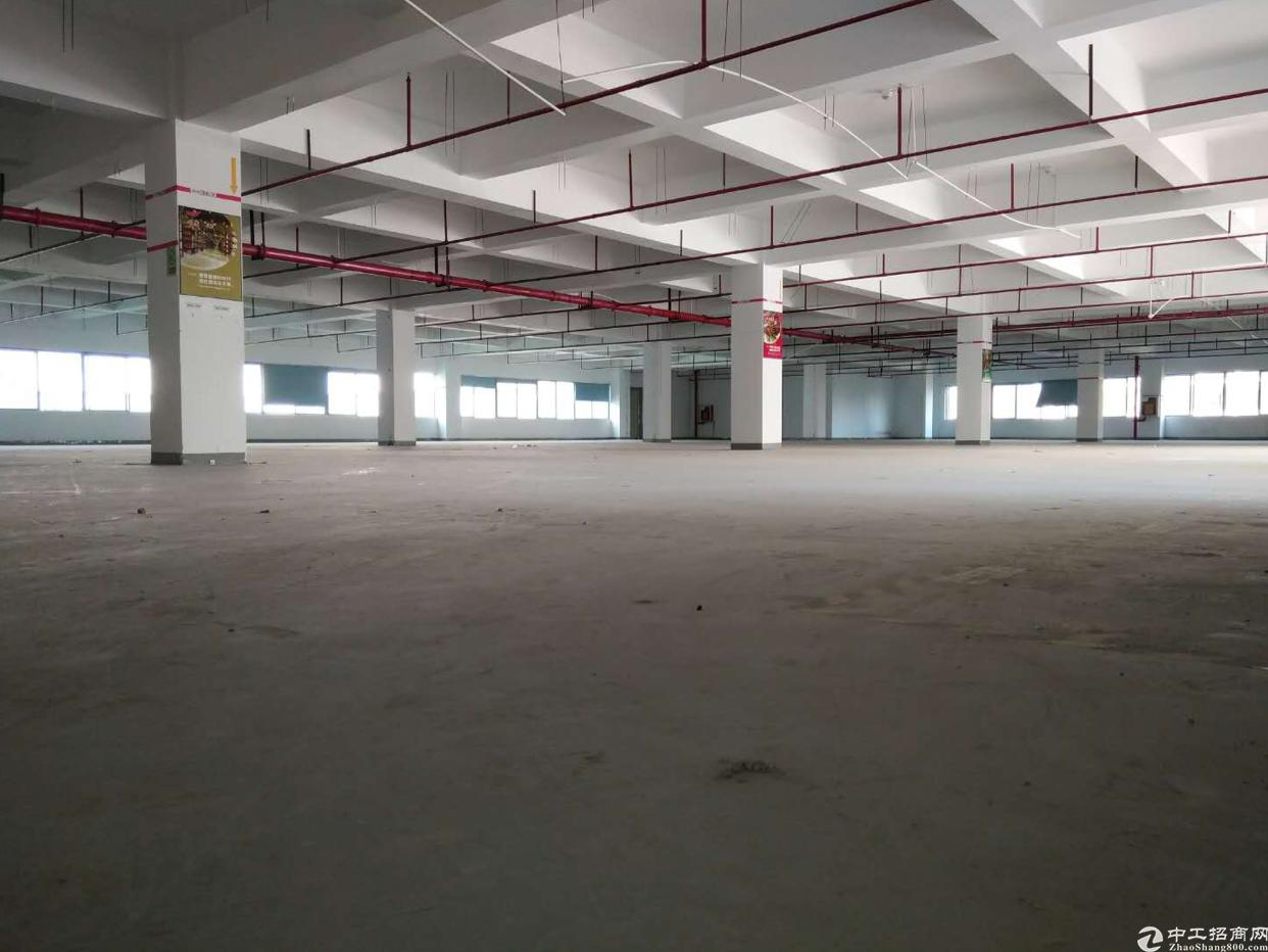 原房东厂房2800平方 可分租