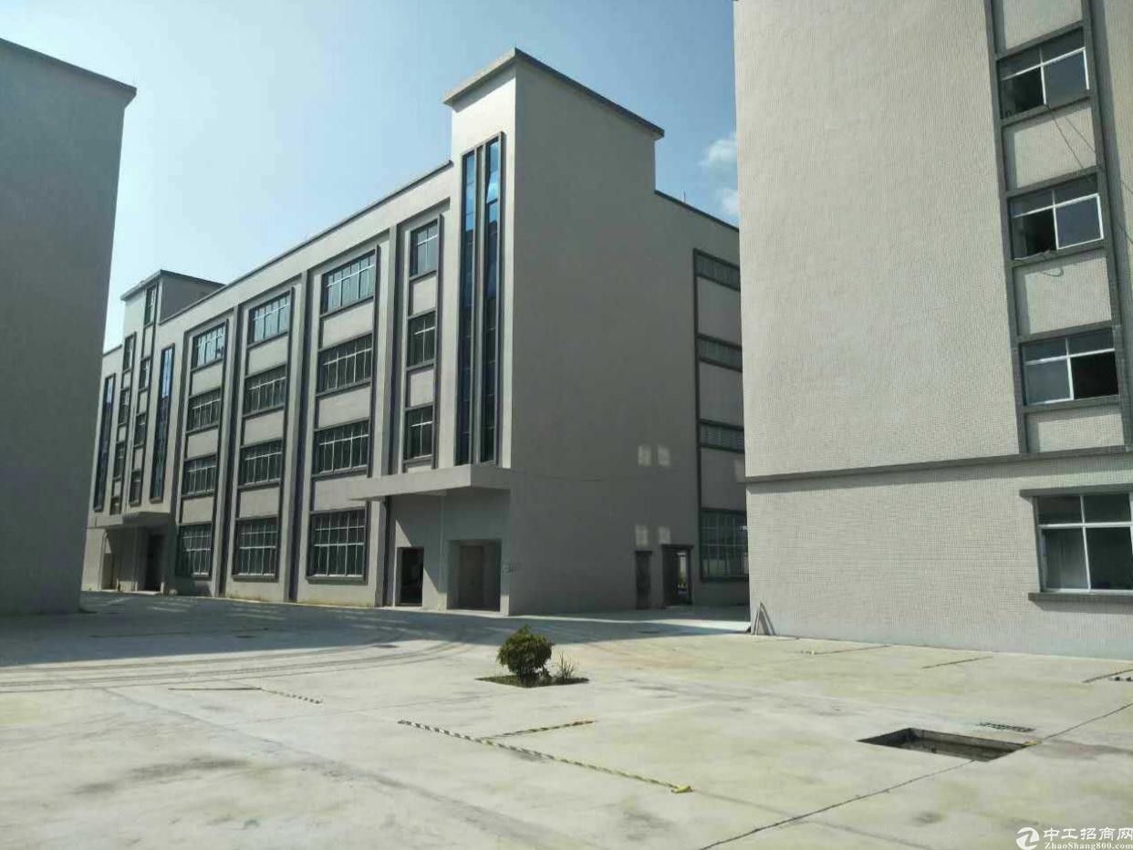 全新新建原房东独院厂房1-4层8000平米,空地超大
